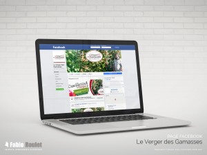 Webmarketing : page facebook